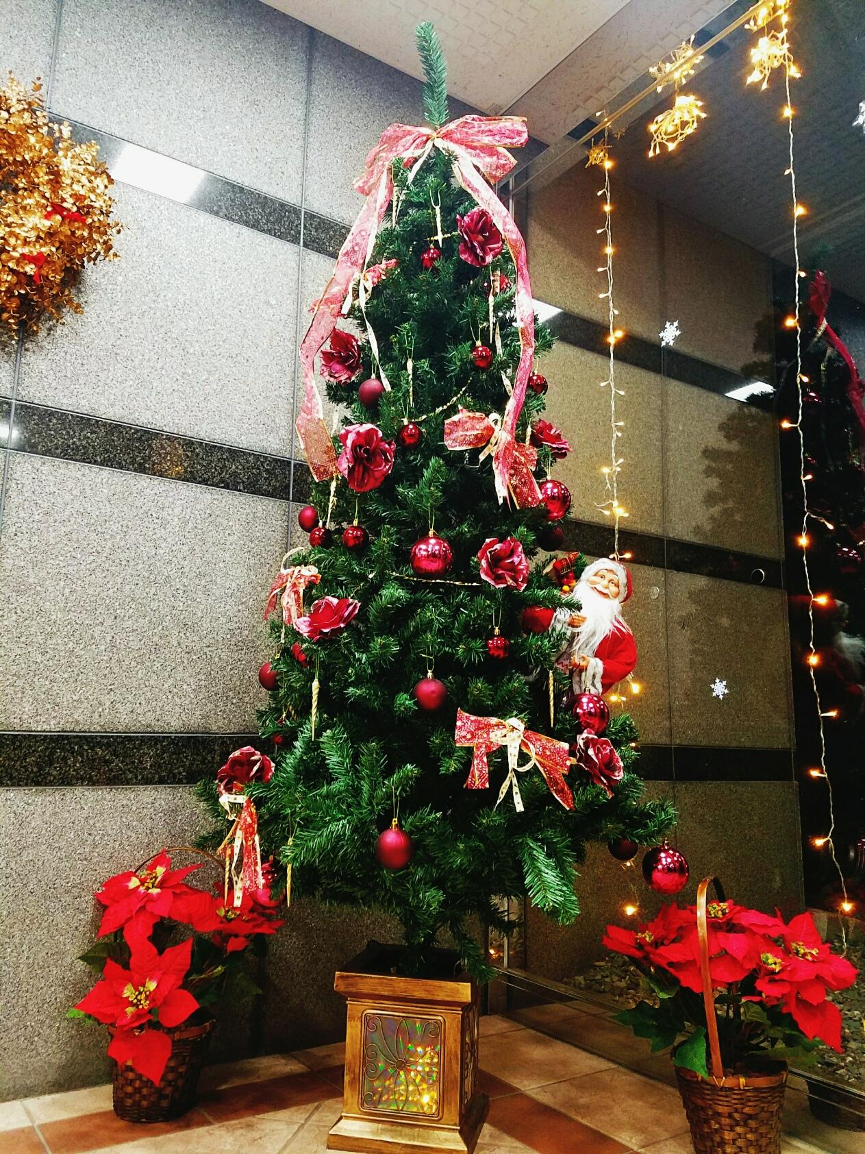 室蘭 クリスマス・お正月限定!!最大24時間ロングステイプラン